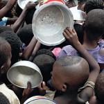 Feeding nine billion people in 2050 – discussion best bits