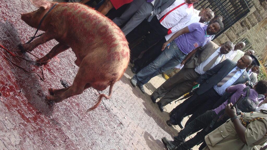 Hon. Mithika Linturi Meets  Mithika Linturi The Pig !