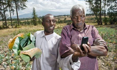 Cassava on eBay? M-Farm SMS helps Kenya's farmers get better prices