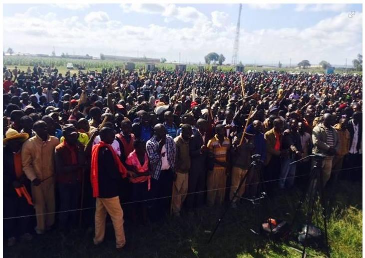 Thousands of MASAI waiting to DIALOGUE with Raila Odinga at Ntulele grounds, Narok County