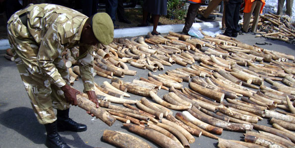 SHOCKING: How guards stole IVORY from State House